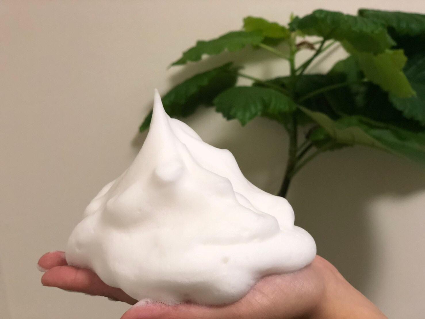究極の泡洗顔